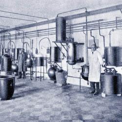 1927_OrganoterÔÇápiÔÇás munkaterem